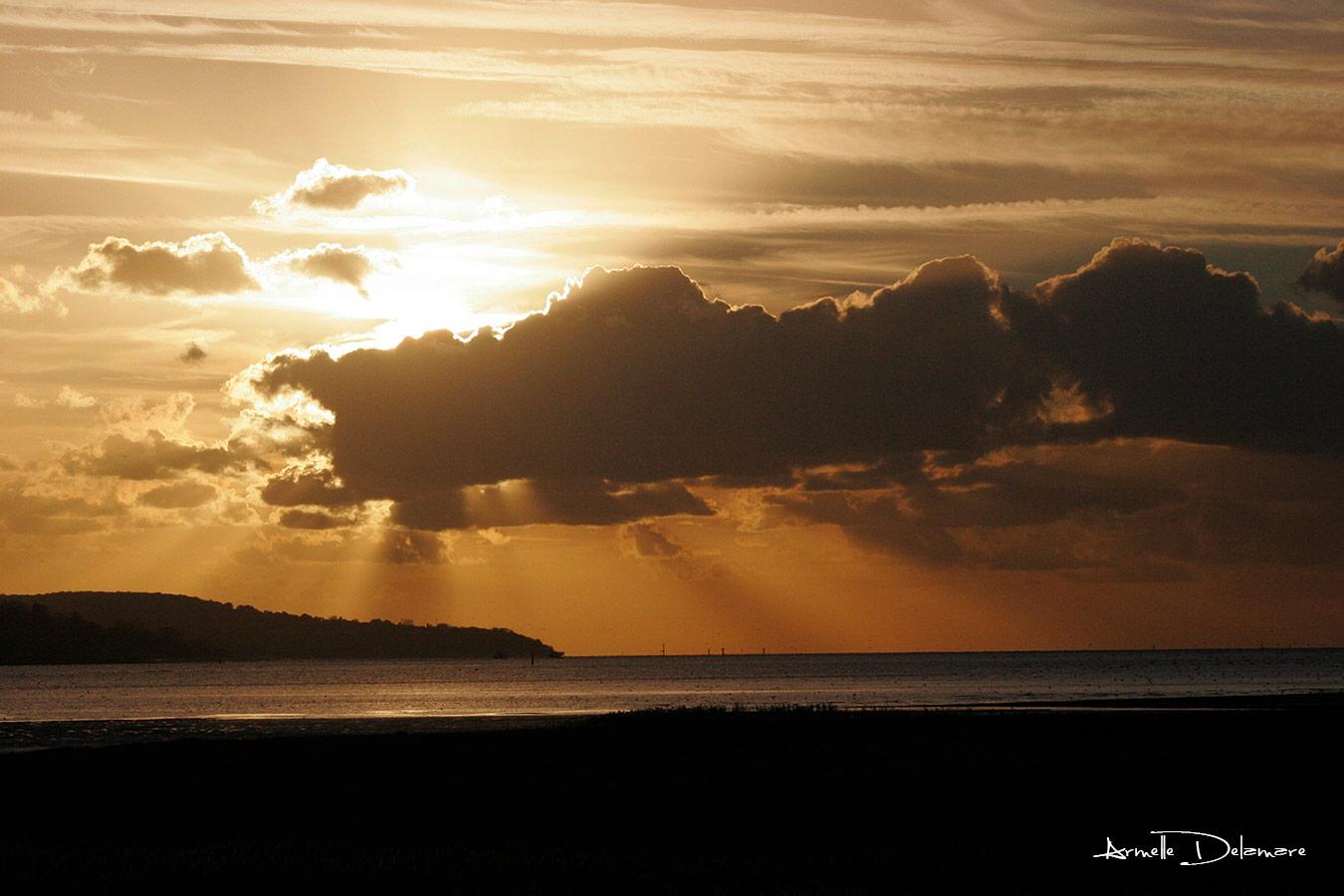 Armelle Delamare Photographe Pavilly Photographie paysage